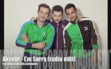 Akcent - I Am Sorry Radio Edit