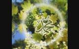 Mehmet Ali Ünsal - Ey Değerli Güzel İnsan