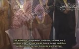 Mekke İmami Mahir - Rahman Suresi