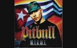 Pitbull - Dirty (ft. Bun B)