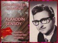 Derdimi Arzetmeye Ol Şuha Bir Dem Bulmadım - Alaaddin Şensoy